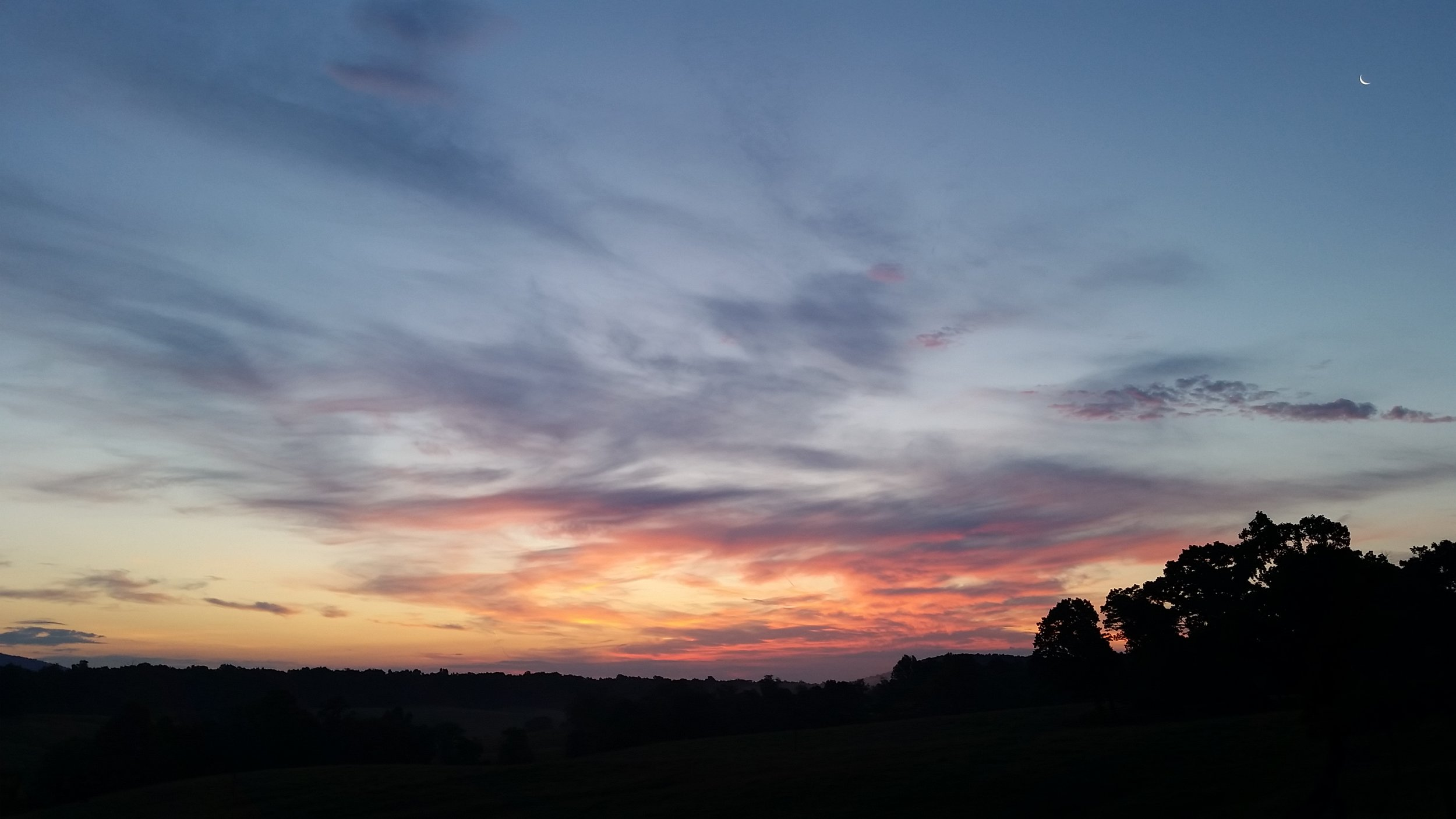 Late June dawn sky. Can you see that sliver of moon almost hidden up there?