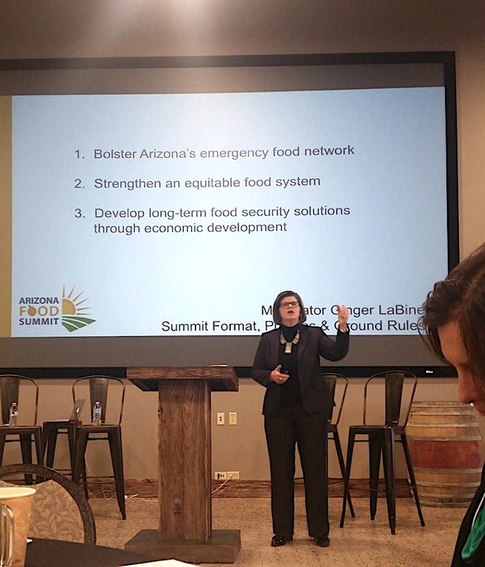 Summit moderator Ginger LaBine outlines the three Summit topics.