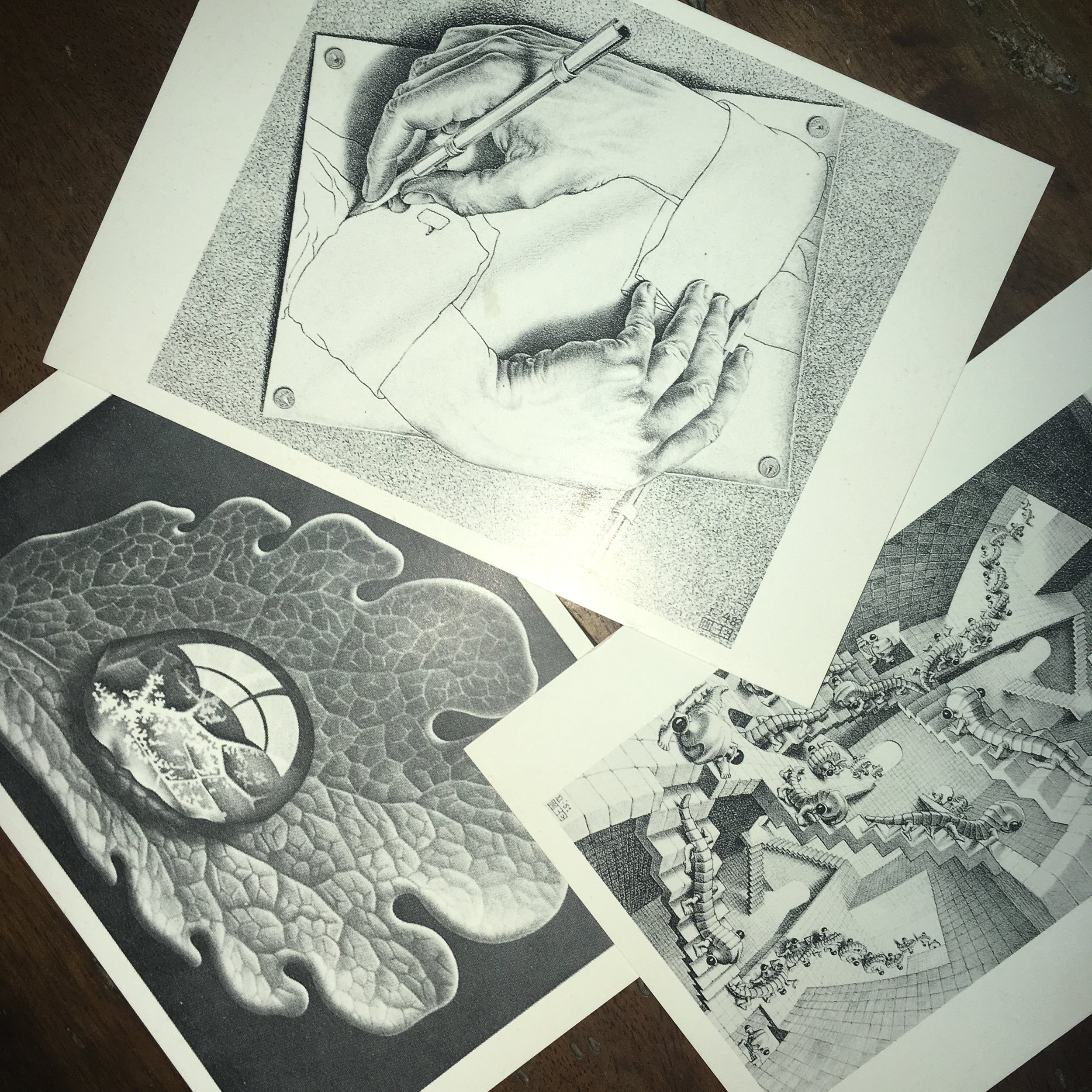 Photograph by author. Postcards of works by M.C. Escher.