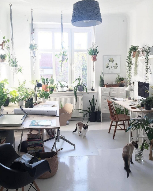 Hopefully your home and office gets plenty of natural light like this one! Show us your natural lit space this month by using our hashtag.