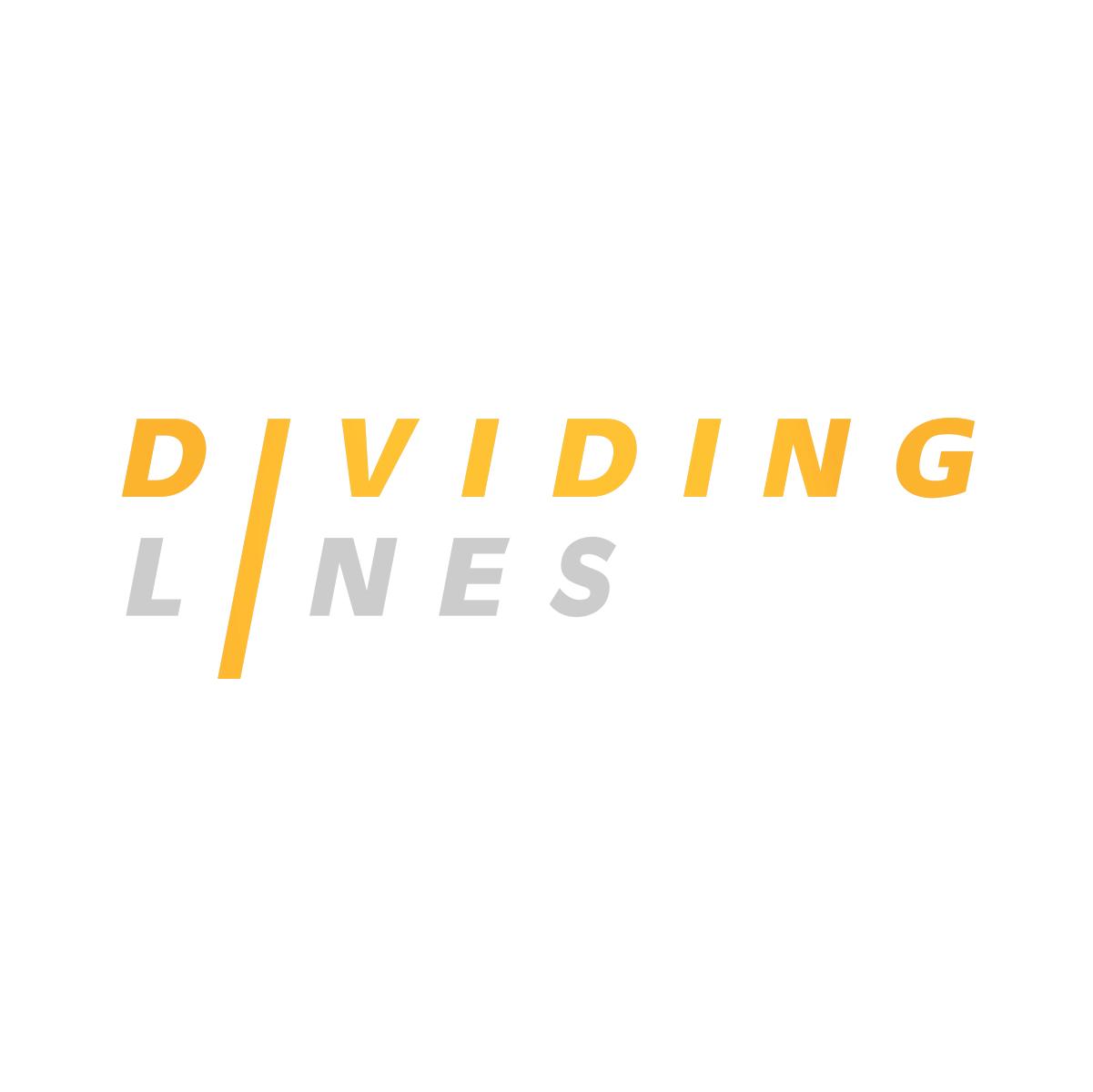 Dividing_Lines_Logo-Grey_300dpi.jpg
