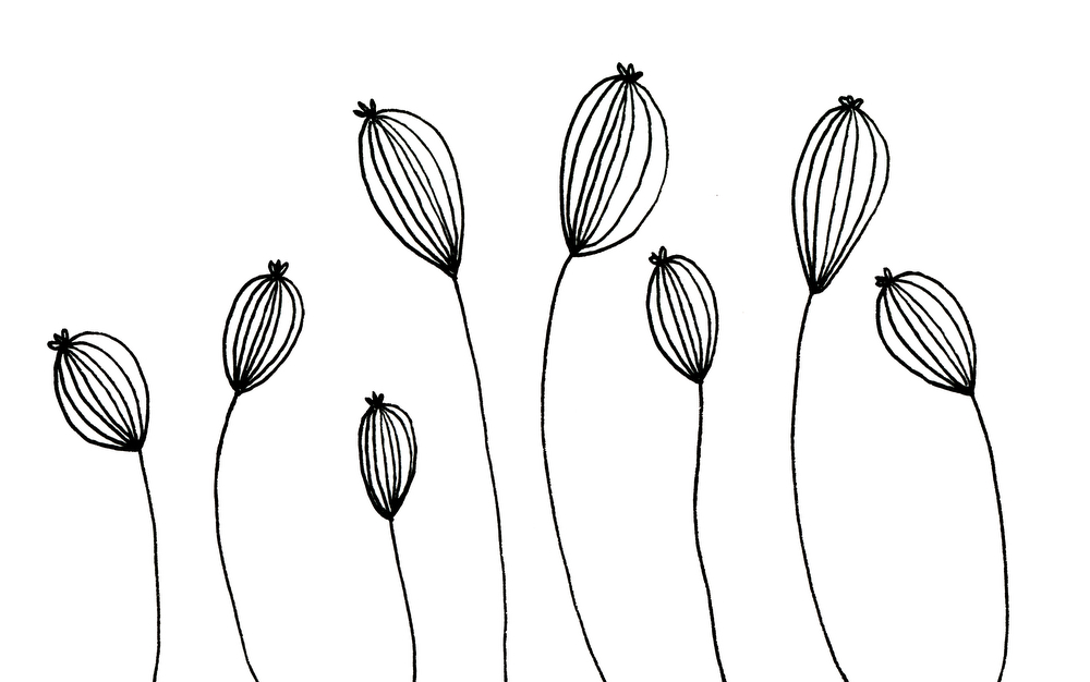 Emma Freeman Designs Drawing.jpg