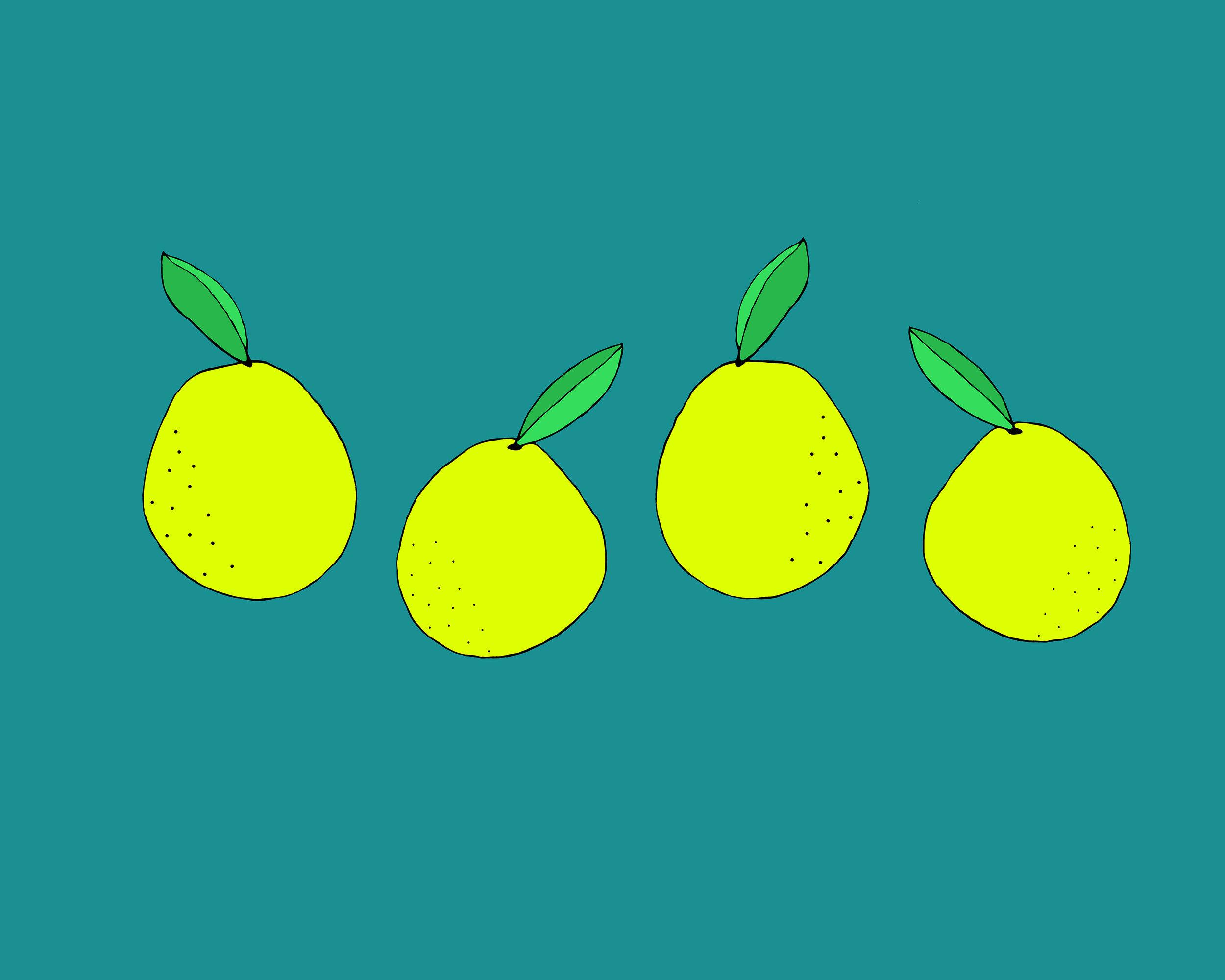 Pear Illustration by Emma Freeman Designs