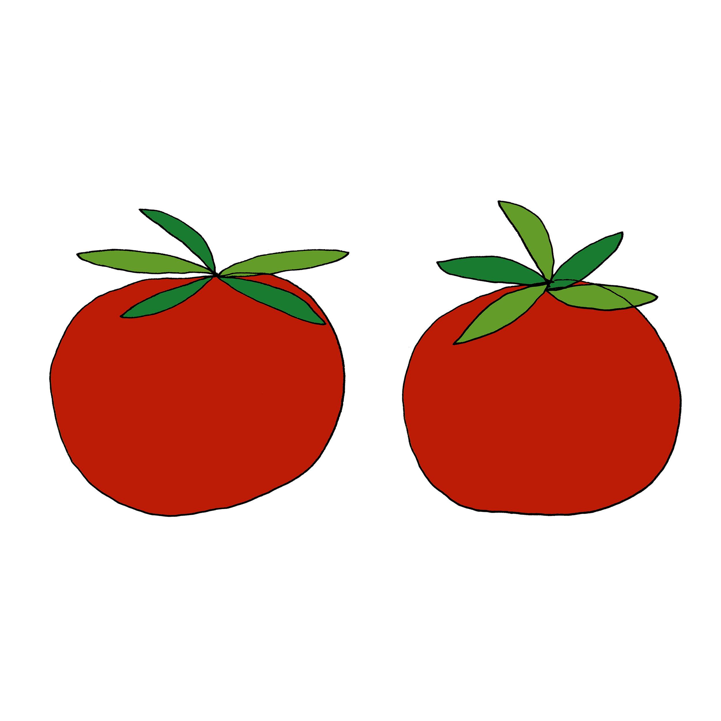 Tomato Illustration by Emma Freeman Designs