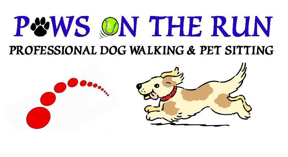 PAws on the Run.jpg
