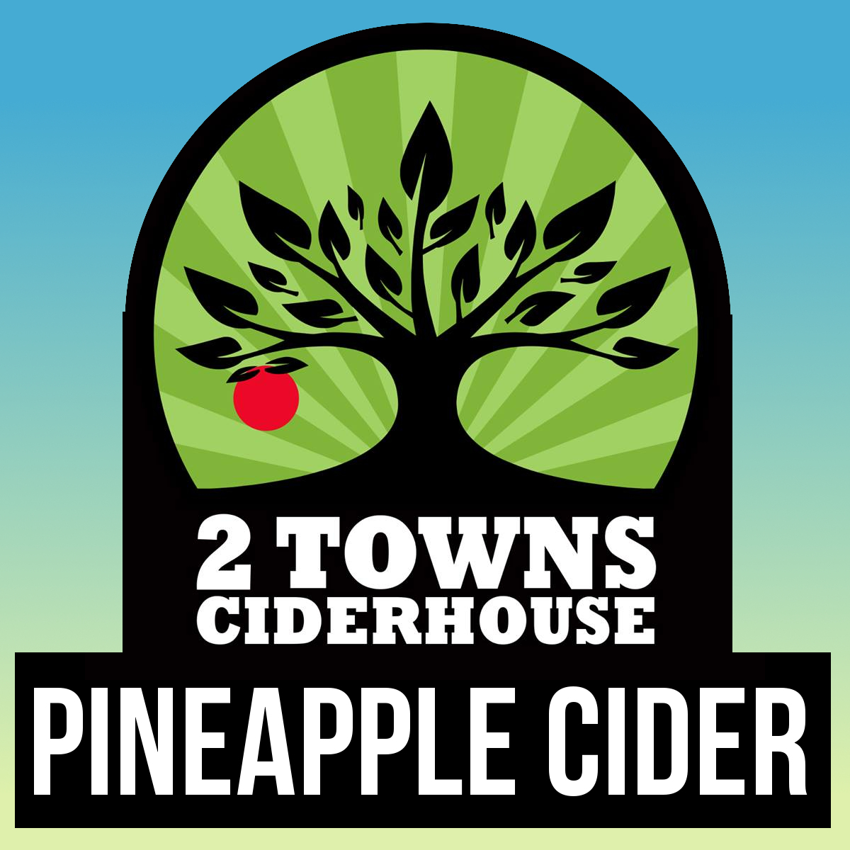 2Towns Pineapple Cider.jpg