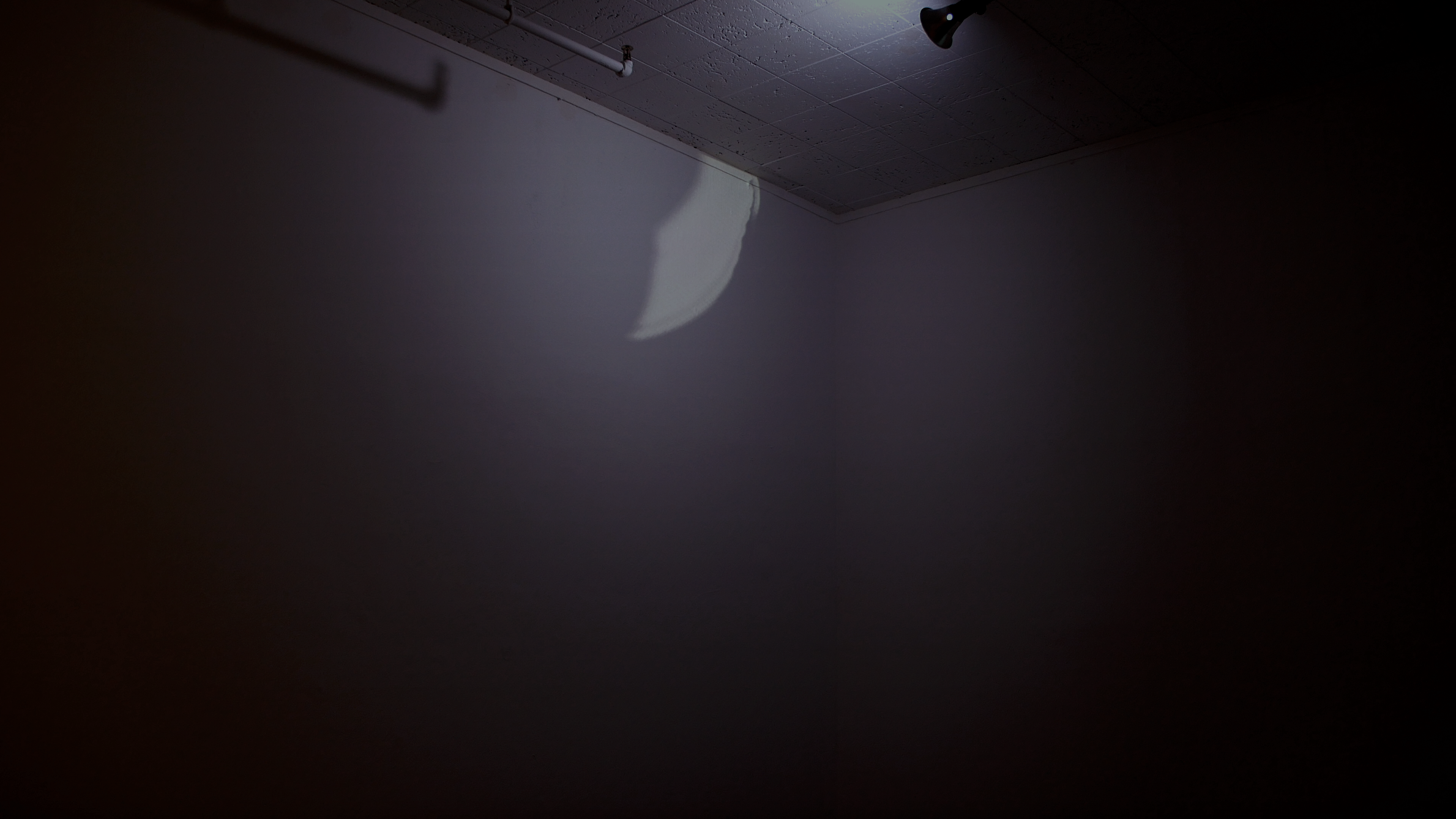 a sunbeam, a light at 6500K    looping video projection, programmable light bulb
