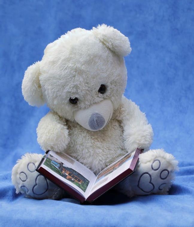 Lapzit Bear.jpg