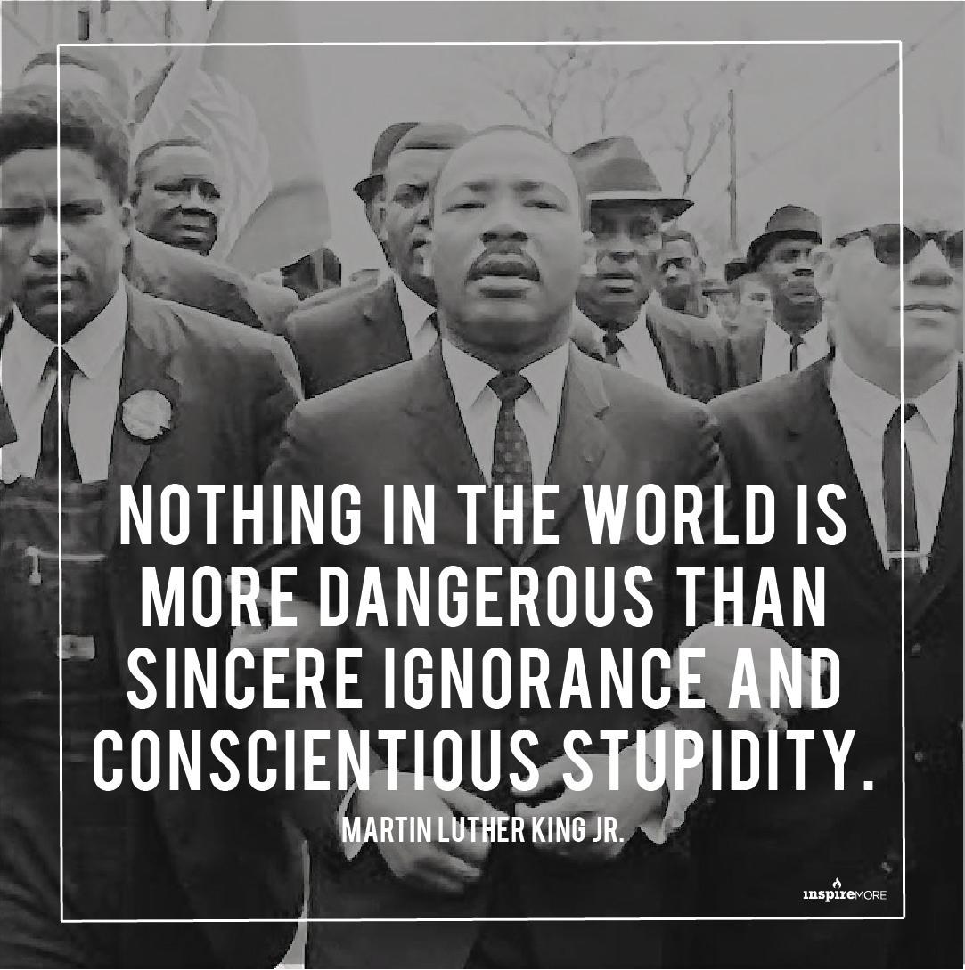 MLKignoranceandstupidity.jpg