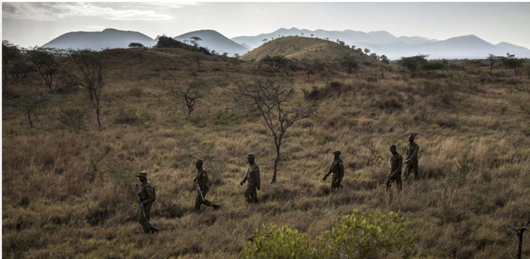 The Most Valued Anti-Poaching Equipment May Surprise You - EcoWatch