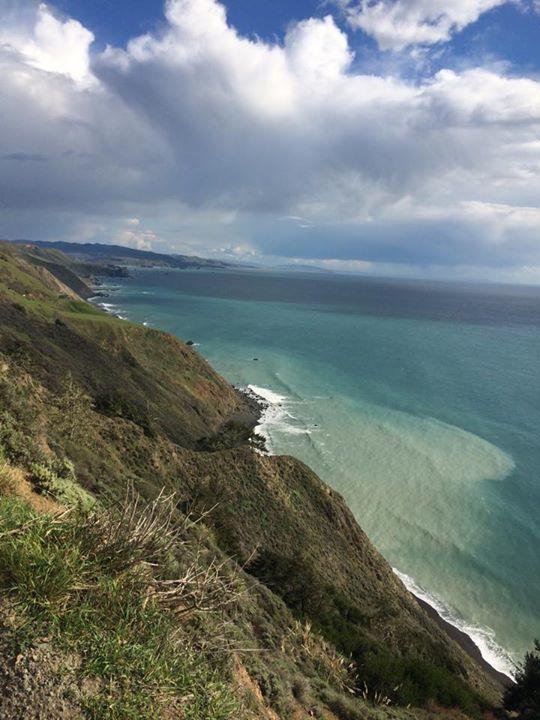 mellow :sonoma coast.jpg