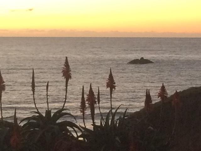 coast: sunset : firepokers.jpg