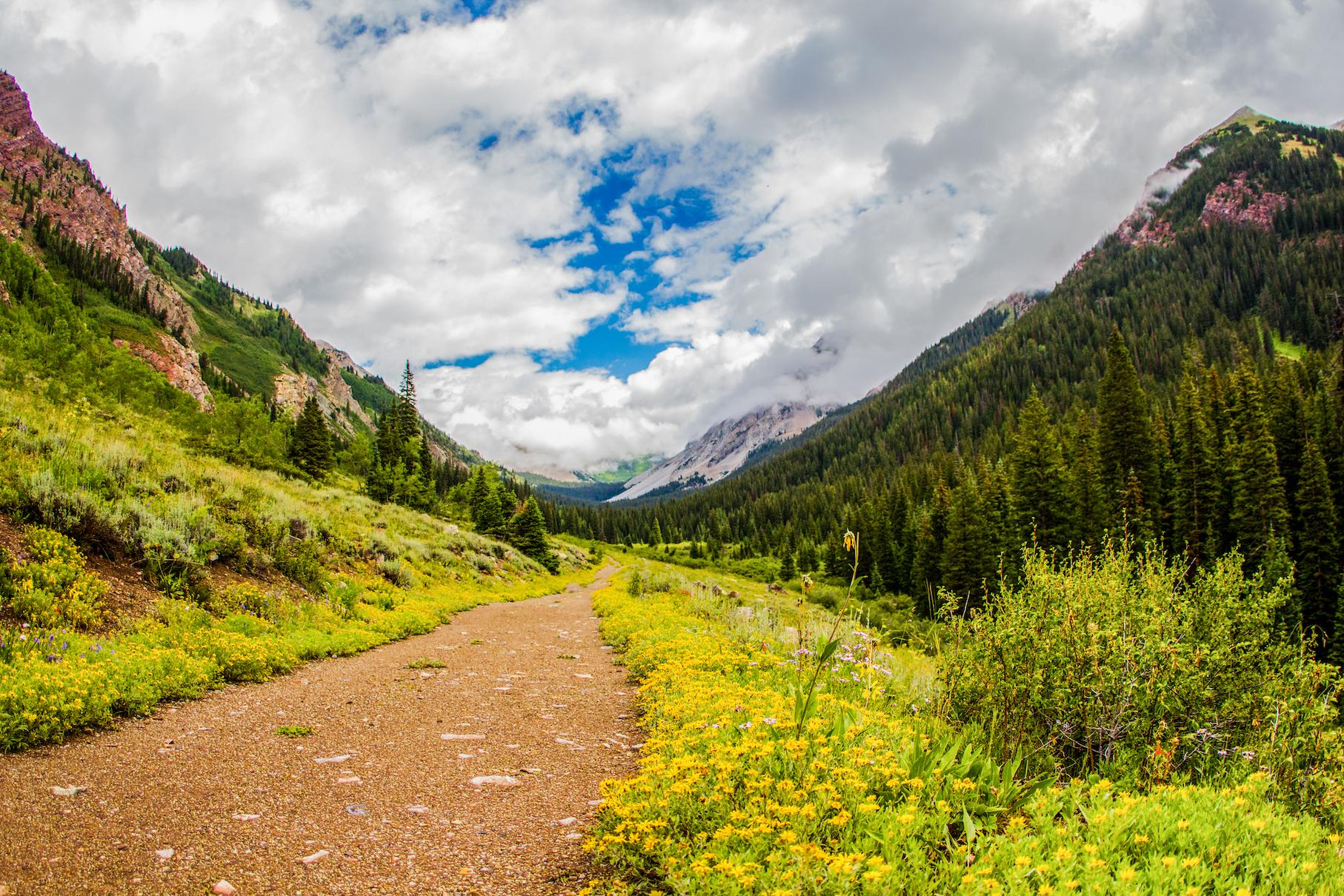 Copper Creek Trail, Gothic Colorado