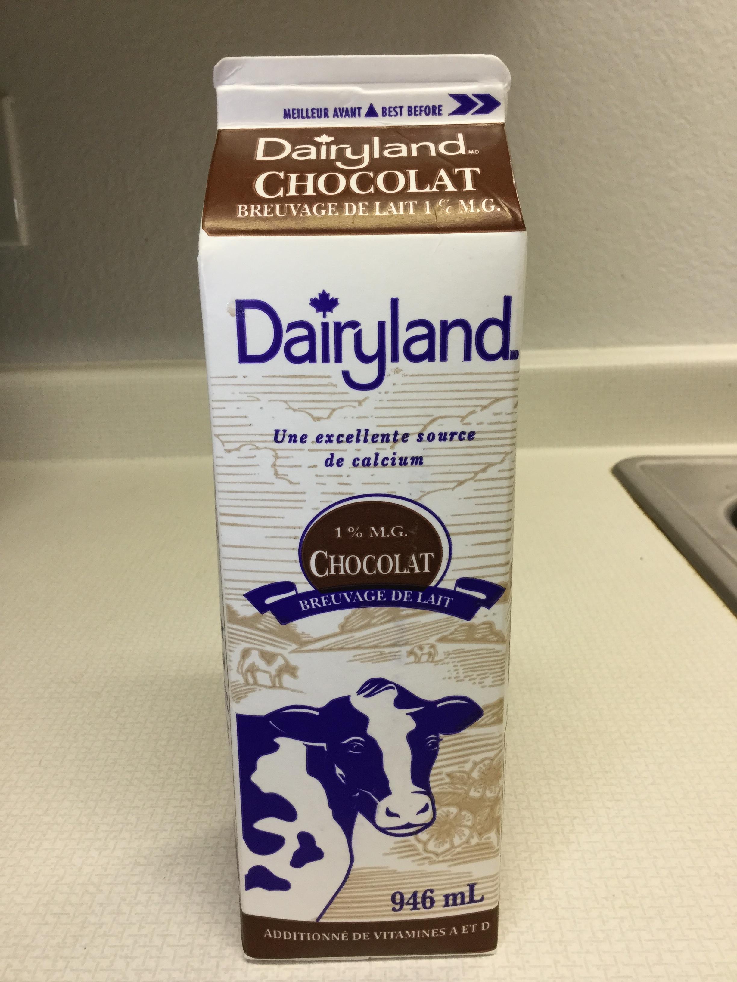 Dairyland Chocolate Milk Beverage (946mL carton) Side 3