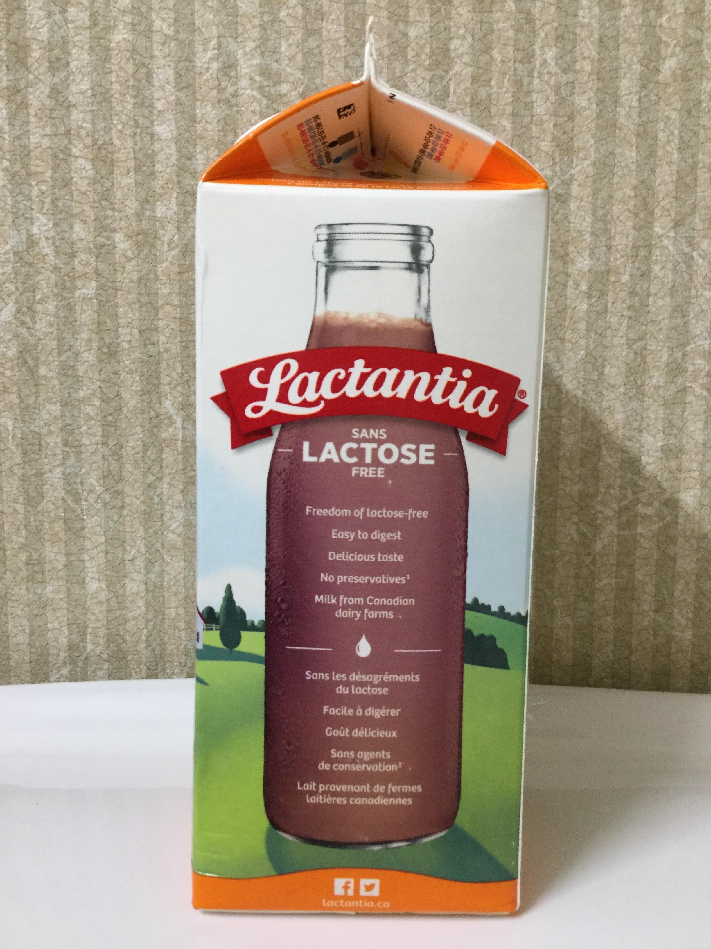 Lactantia Lactose Free Chocolate Milk Side 3
