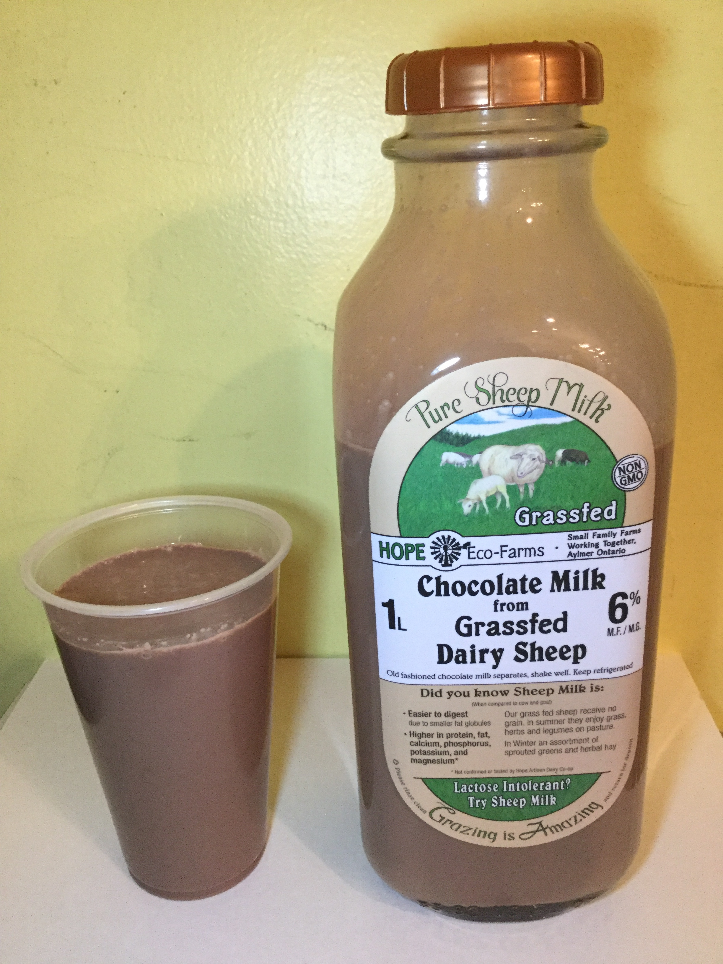 Hope Eco-Farms Chocolate Milk From Grassfed Sheep Cup