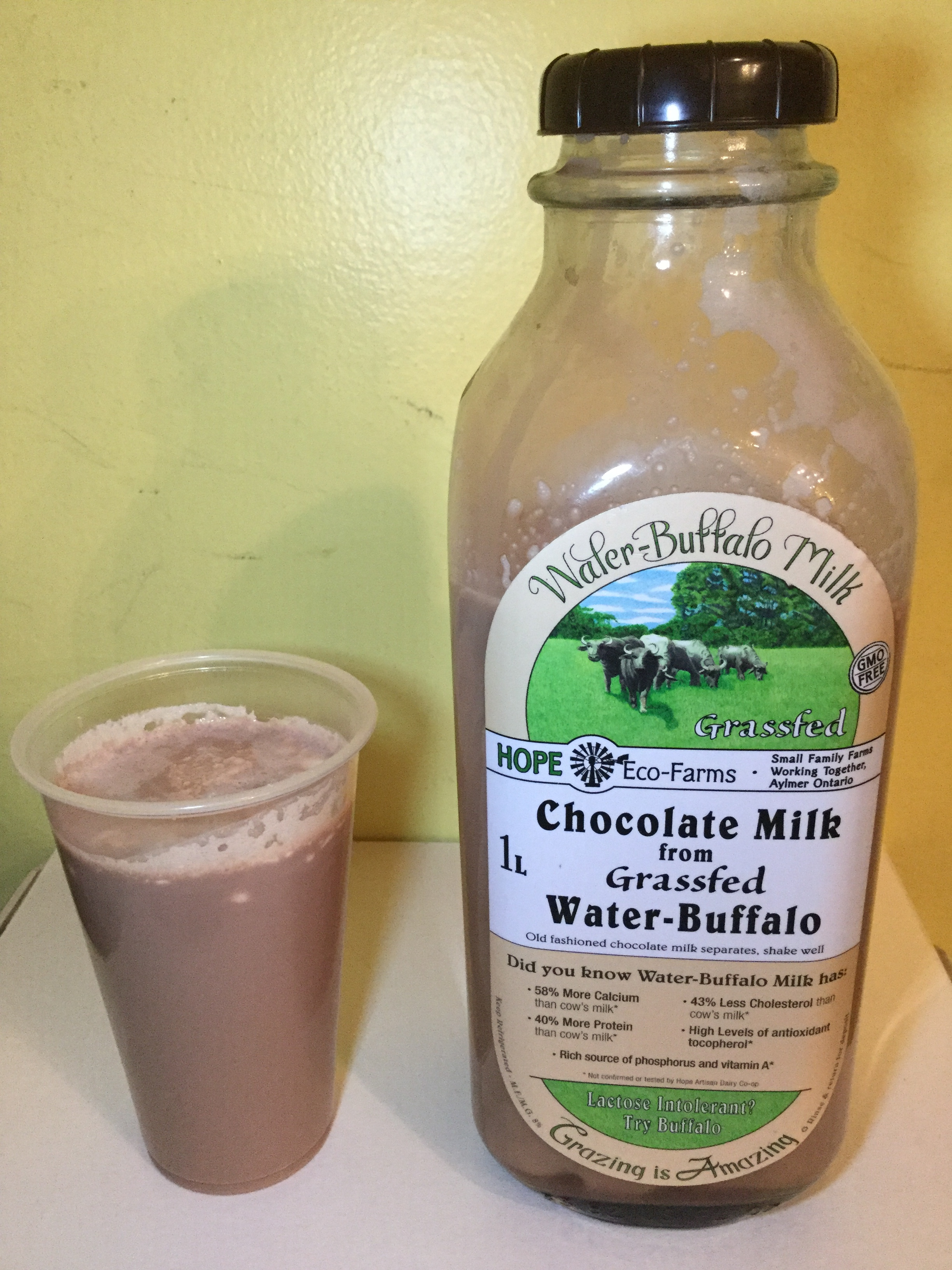 Hope Eco-Farms Chocolate Milk from Grassfed Water-Buffalo Cup