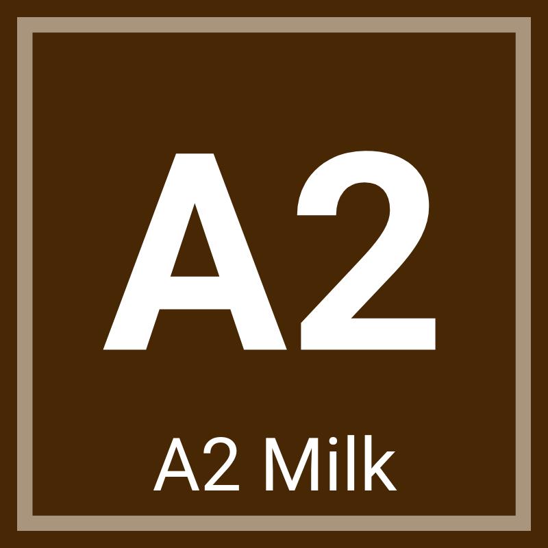 A2 Chocolate Milk