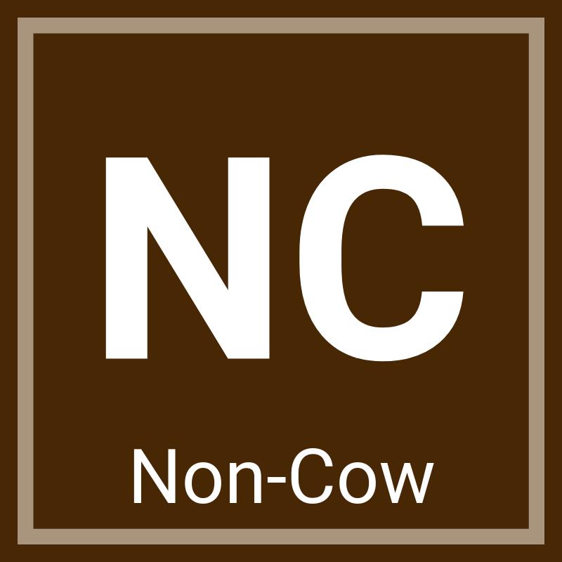 Non-Cow Chocolate Milk