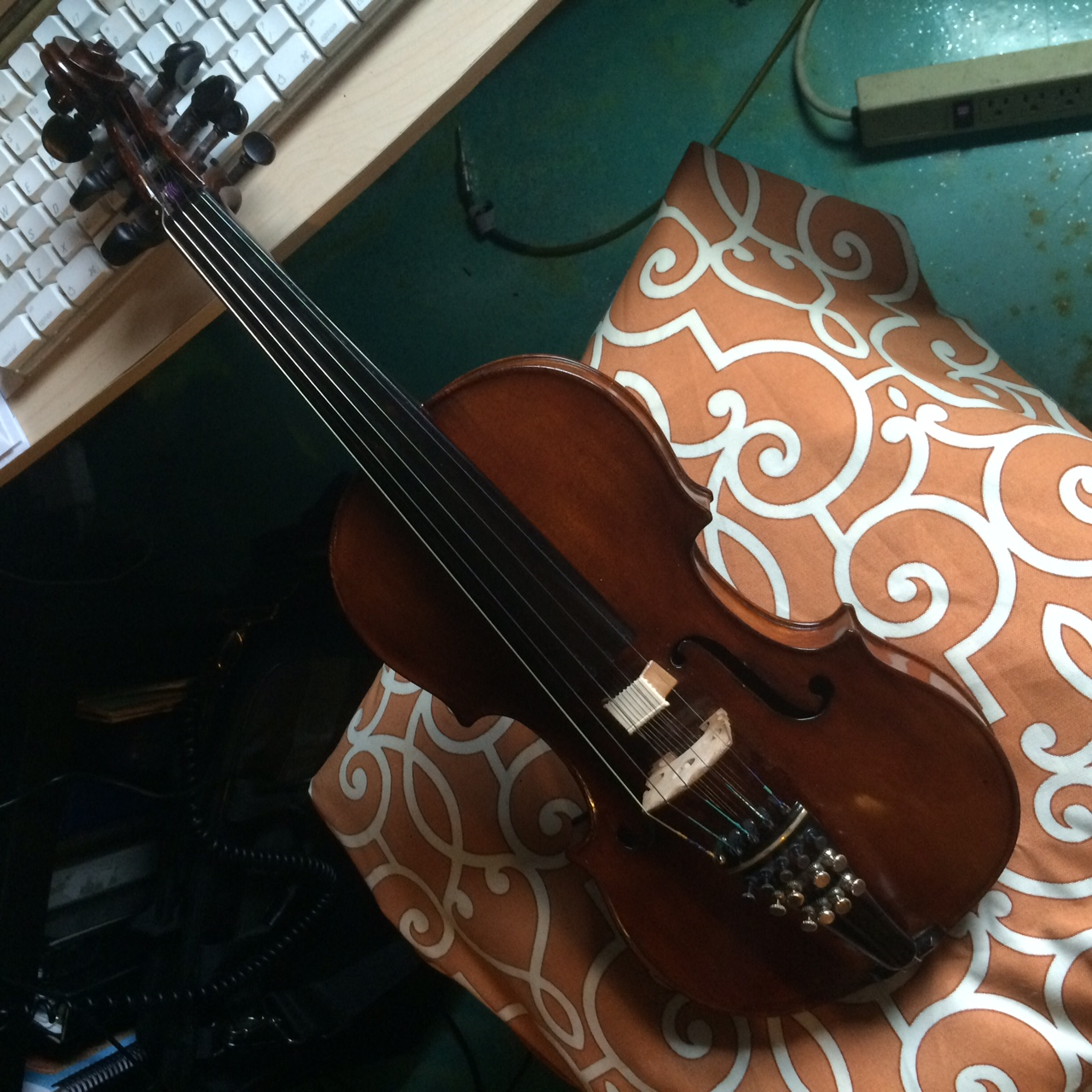 Five String Violin with Eight Resonating Strings.