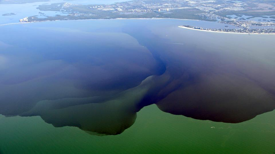 LAKE OKEECHOBEE DISCHARGES INTO THE CALOOSAHATCHEE CREEP OUT TO SANIBEL AND FORT MYERS BEACH. SOURCE: facebook.com/CaptainsForCleanWater