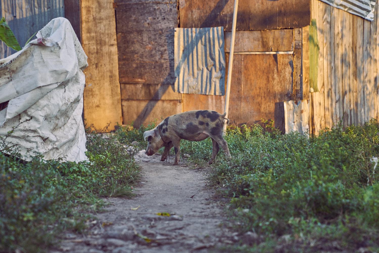 AMVISUALS-Haiti-2016-Print_DSC0037.jpg