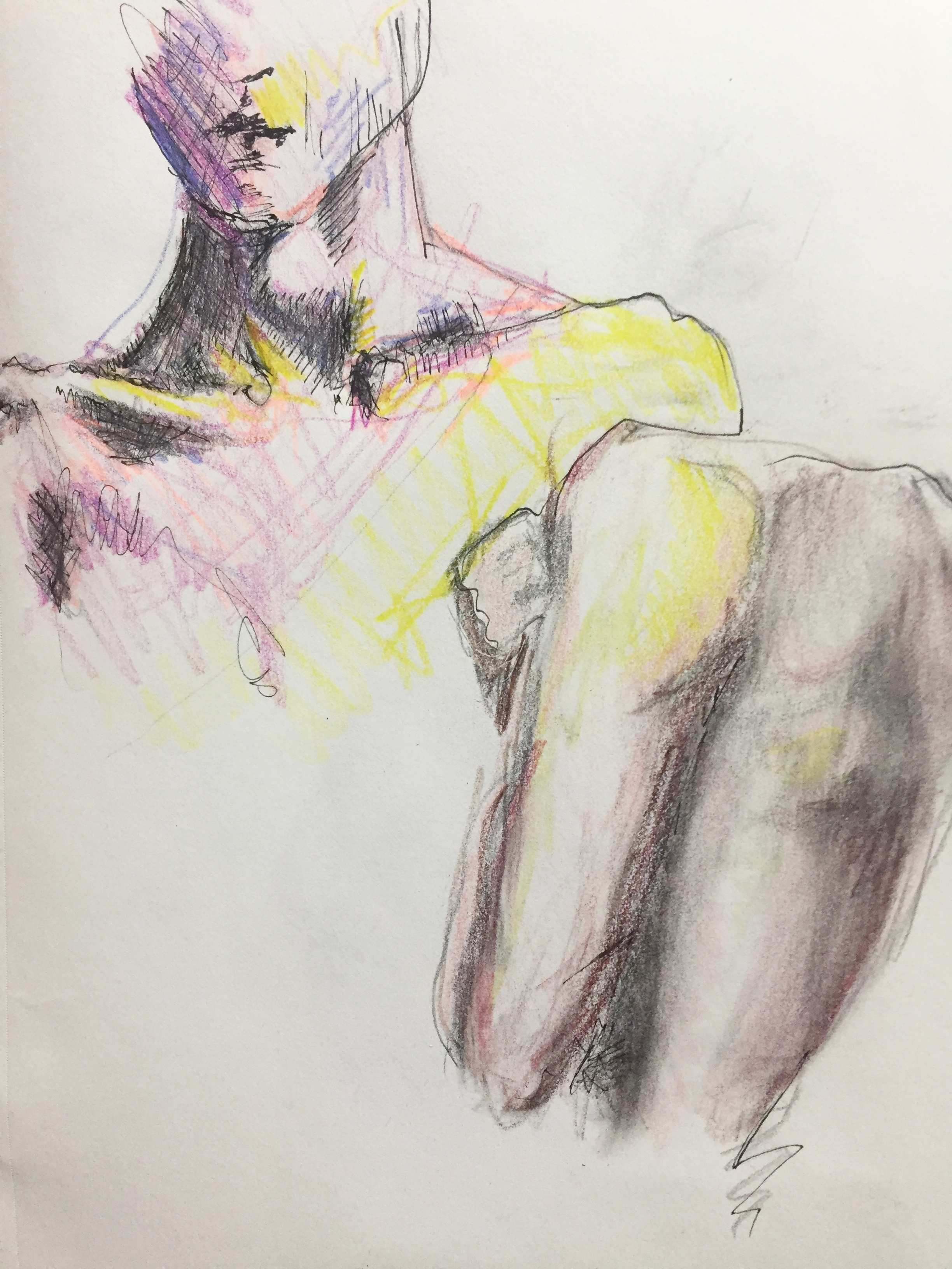 Life Studies, pen and pencil crayon on paper, 2016