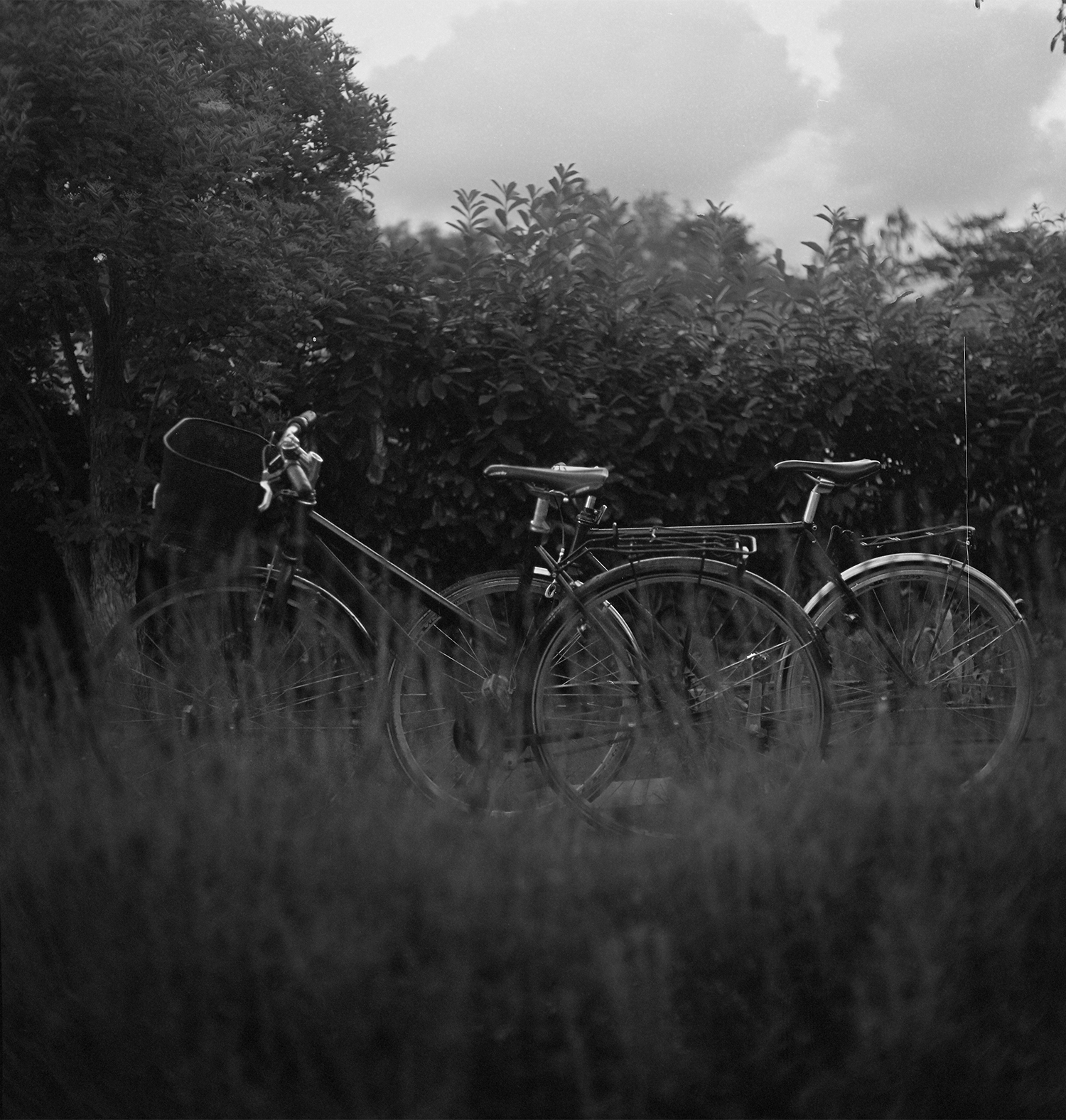 Bikes_Sm.jpg