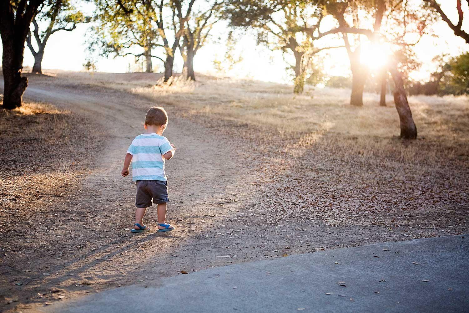 Toddler Exploring, Amy Wright Photography, Roseville Family Photographer