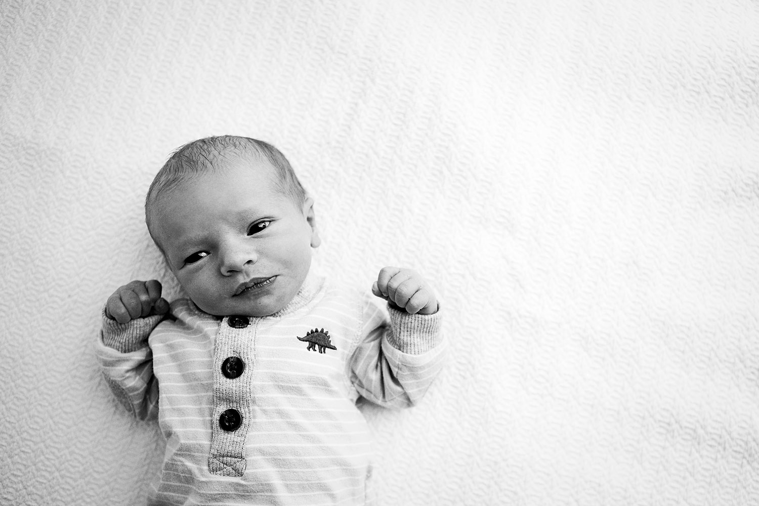 Newborn Baby Boy Amy Wright Photography Roseville Newborn Photographer