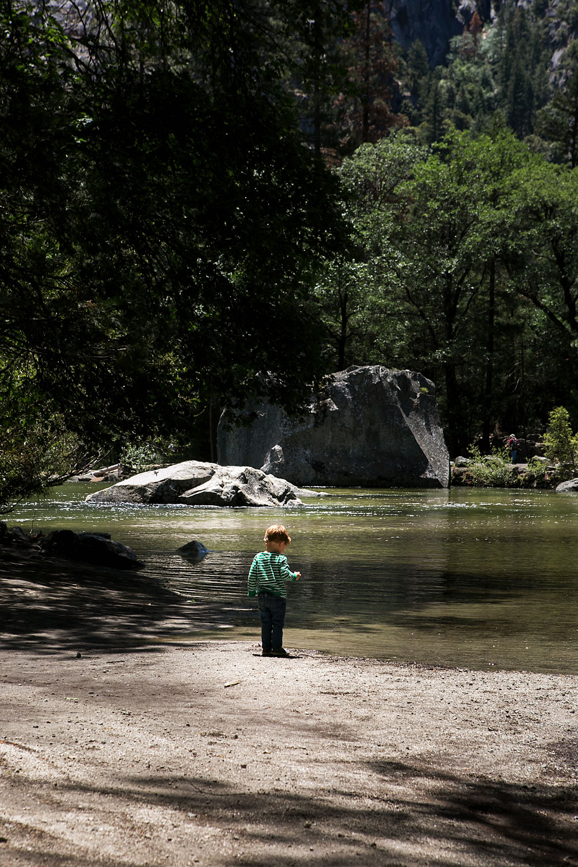 Yosemite National Park with kids, Amy Wright Photography, Sacramento Family Photographer