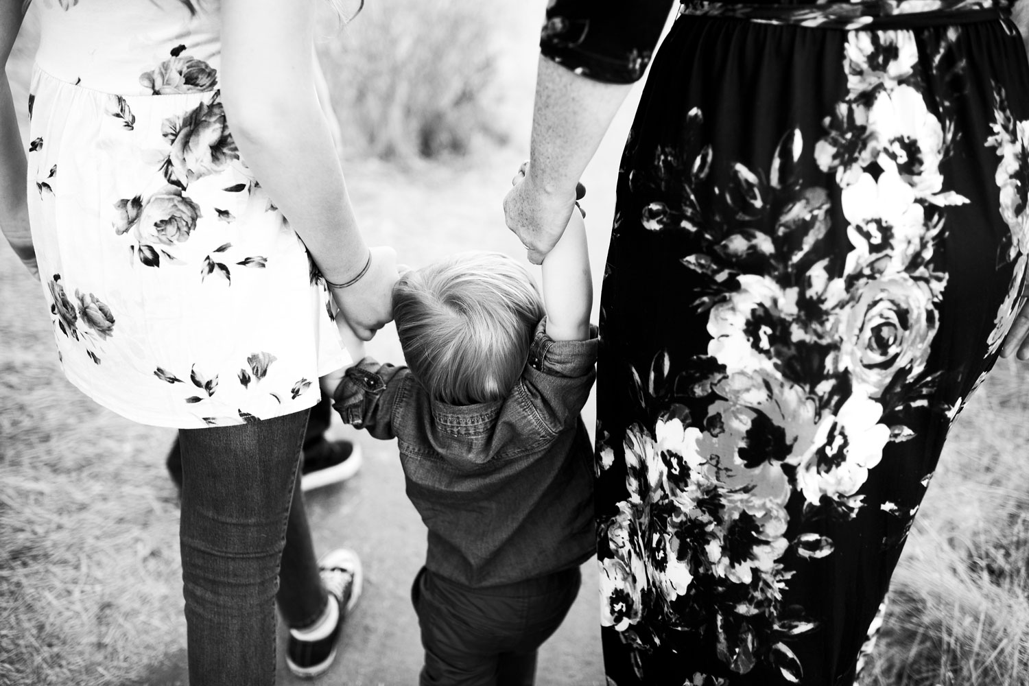 Family of Six, Roseville Family Photographer, Amy Wright Photography
