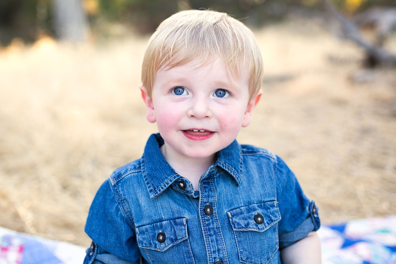 Toddler Boy, Roseville Family Photographer, Amy Wright Photography