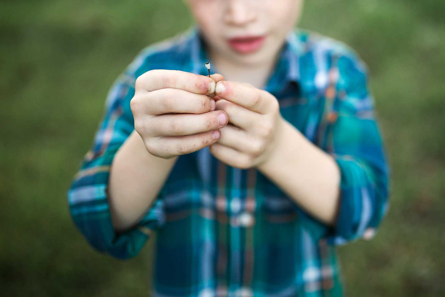 A boy finds some nature treasures in Roseville, California.