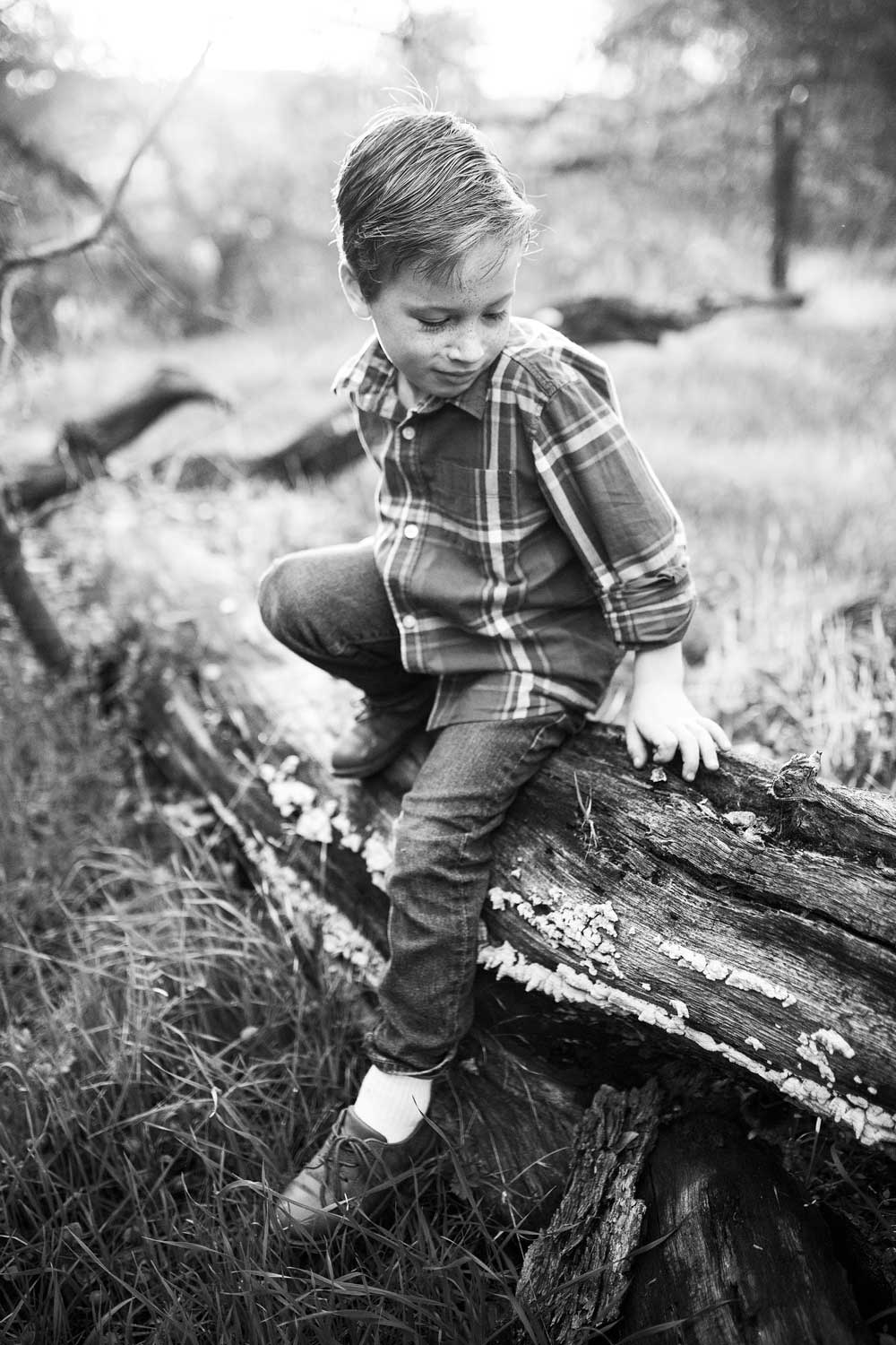 A boy sits on a log in a field in Roseville, California during a photo session with Amy Wright Photography.