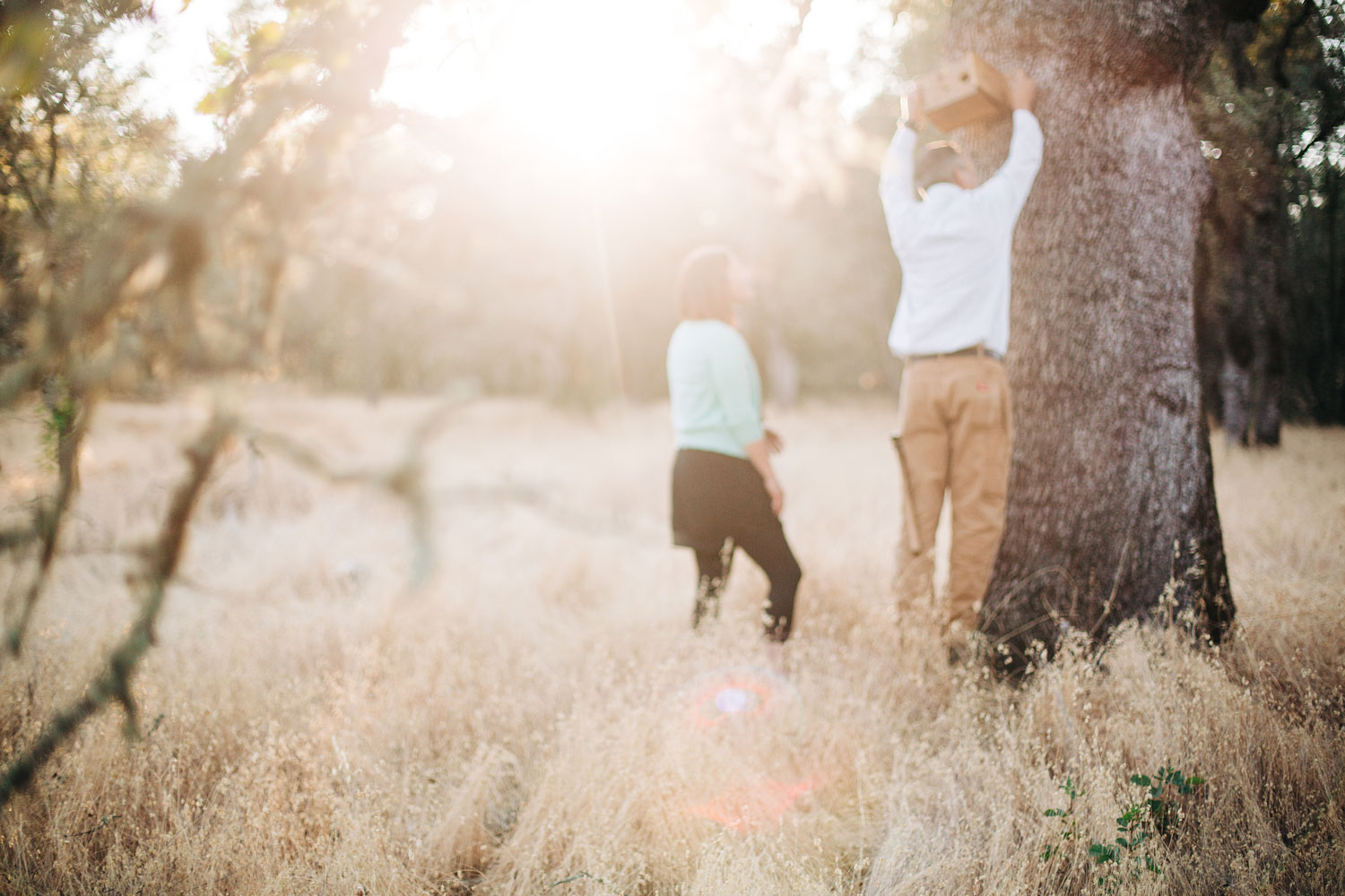 A couple hangs a birdhouse in honor of their late dog during a in-home lifestyle family photogro session in Sacramento, California.