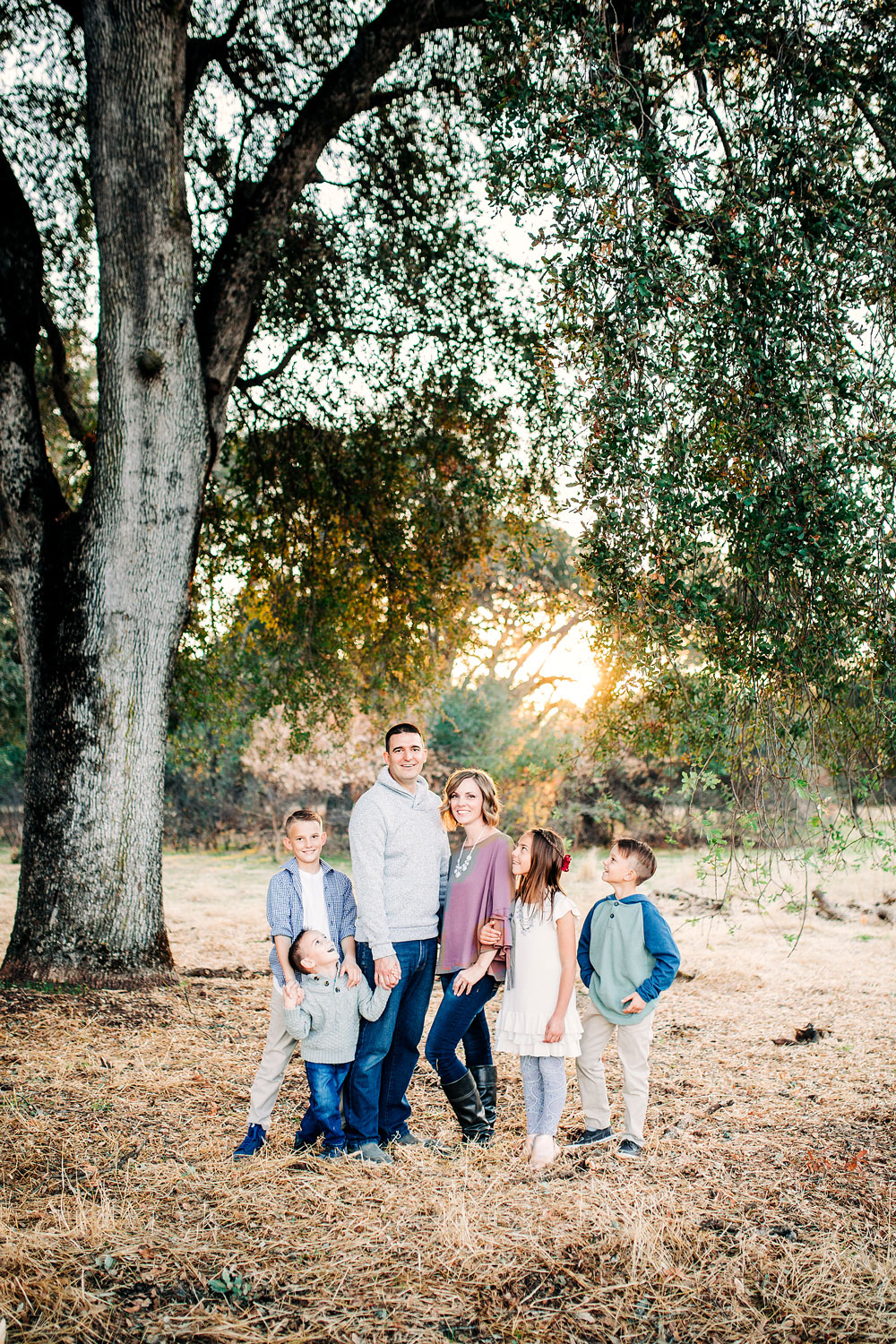 A happy family gathers under a tree for pictures during a lifestyle photo session with Amy Wright Photography in Roseville, California.