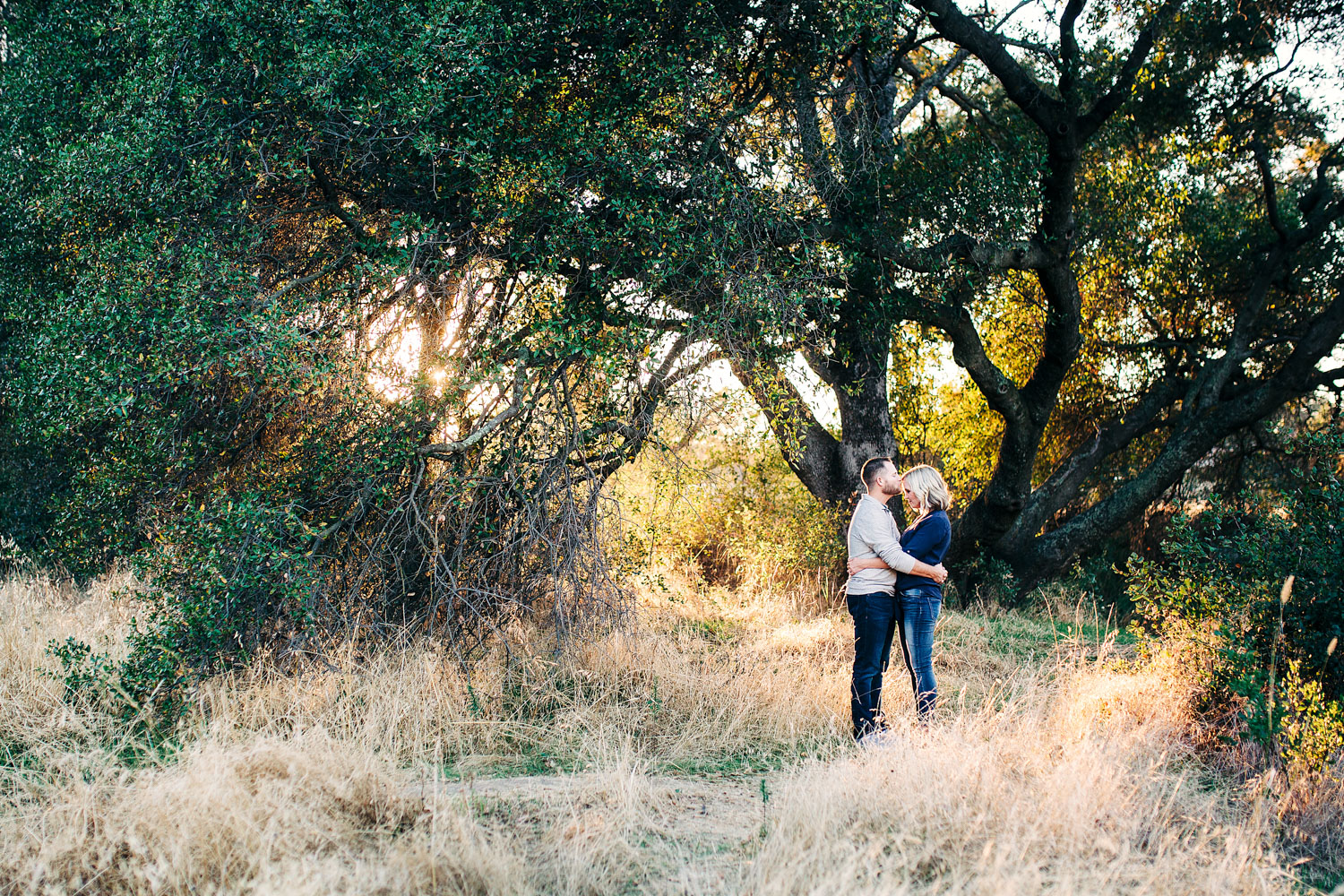 A husband kisses his wife's forehead near a large tree during their family photo session outside during golden hour in Roseville, California.