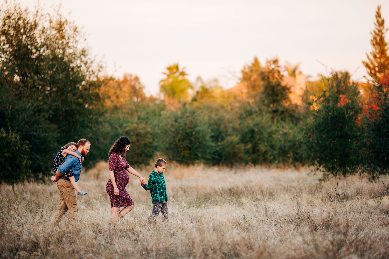 A family of four walks together in a field during a maternity photo session with Amy Wright Photography in Roseville, California.