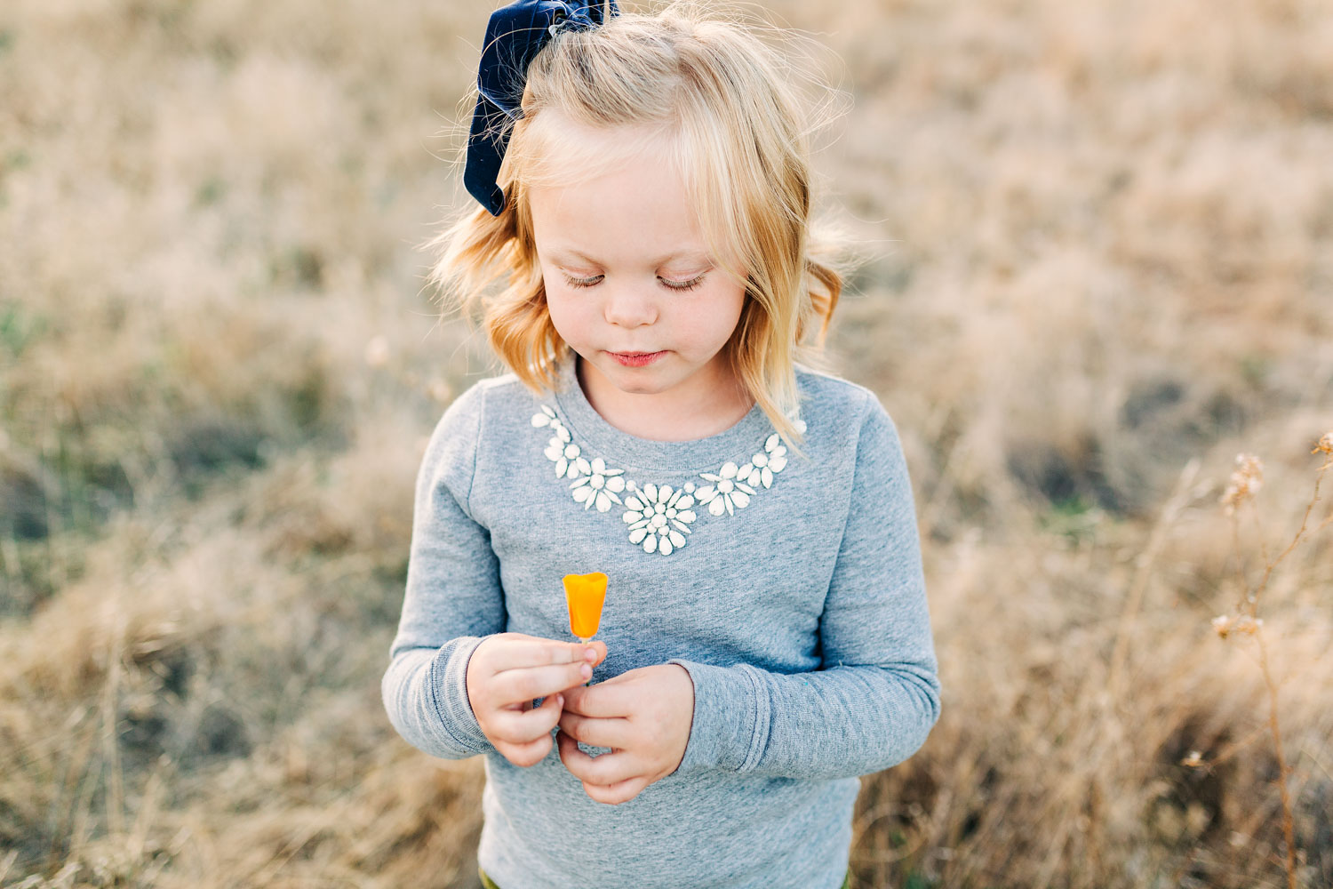 A girl picks a California poppy during a family photo session in Roseville, California with Amy Wright Photography.