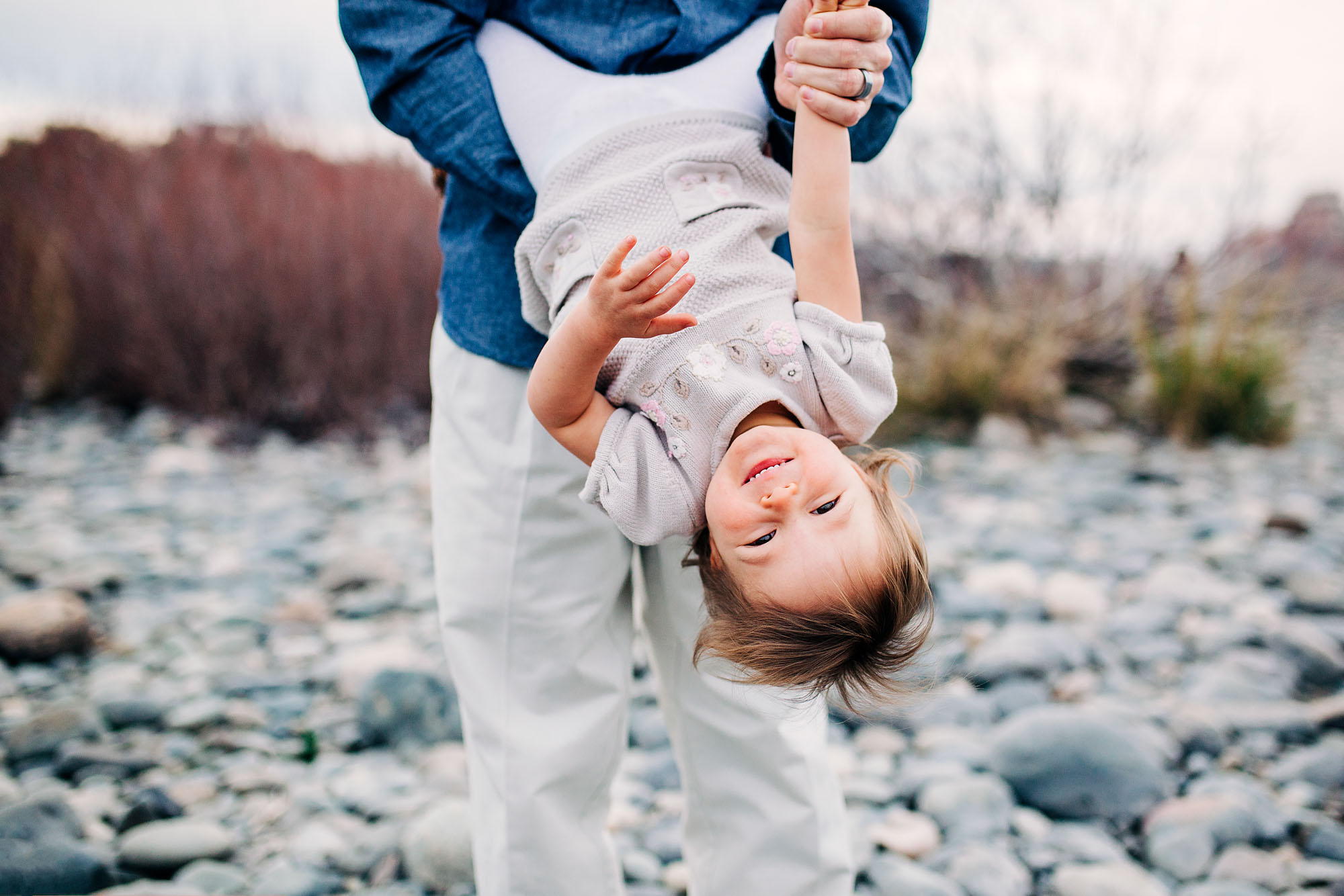 A father playfully dips her toddler daughter during a fun filled family photo session with Amy Wright Photography in Sacramento, California.