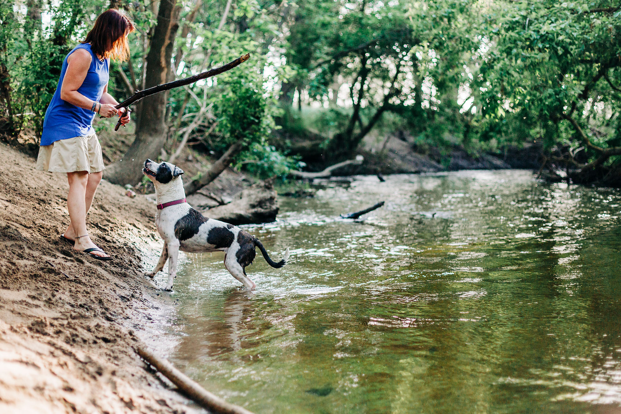 A woman plays with her dog at a local Roseville, CA creek during a family photography session with photographer AMy Wright