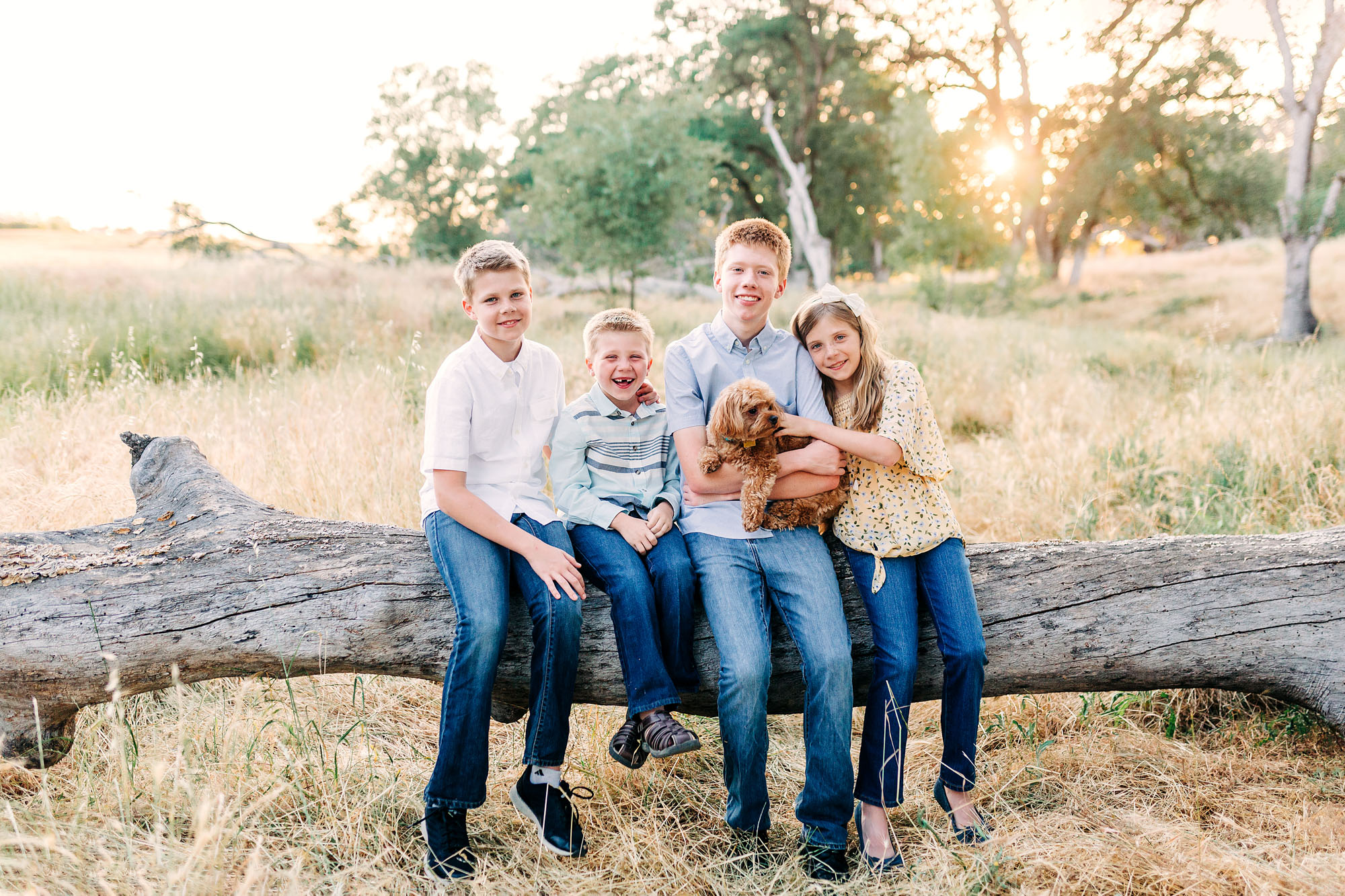 Four siblings sit with their dog for a picture with family photographer Amy Wright in Roseville, California.