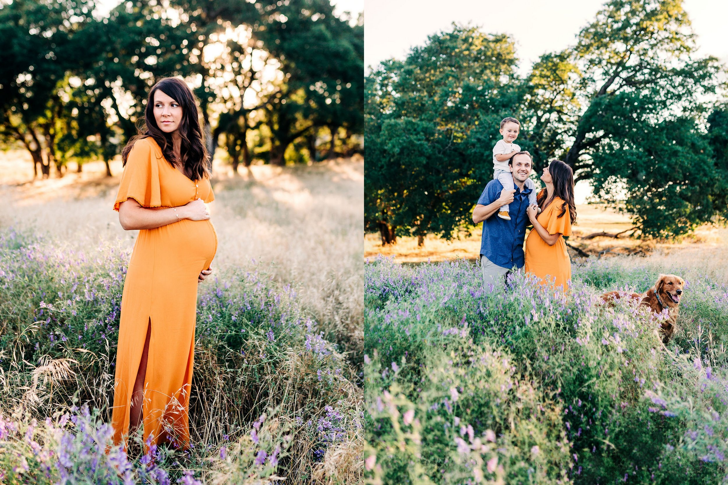 An expecting mother and her family have their pictures taken during a maternity photo session with lifestyle photographer Amy Wright, who is based out of Roseville, California.