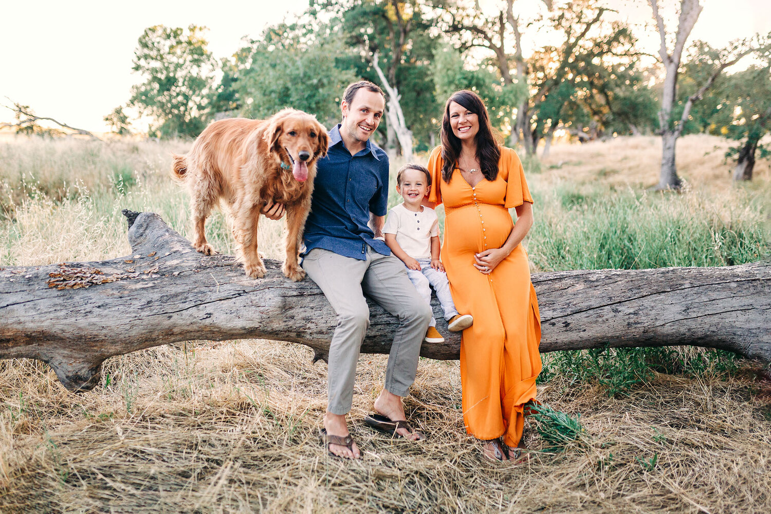 A family of three sits with their dog during a maternity photo session with lifestyle photographer Amy Wright in Roseville, California.