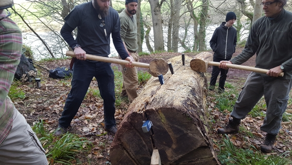 Cleaving a big oak tree for the Sharpham Bench Project - you can see more about this project by clicking on the picture.