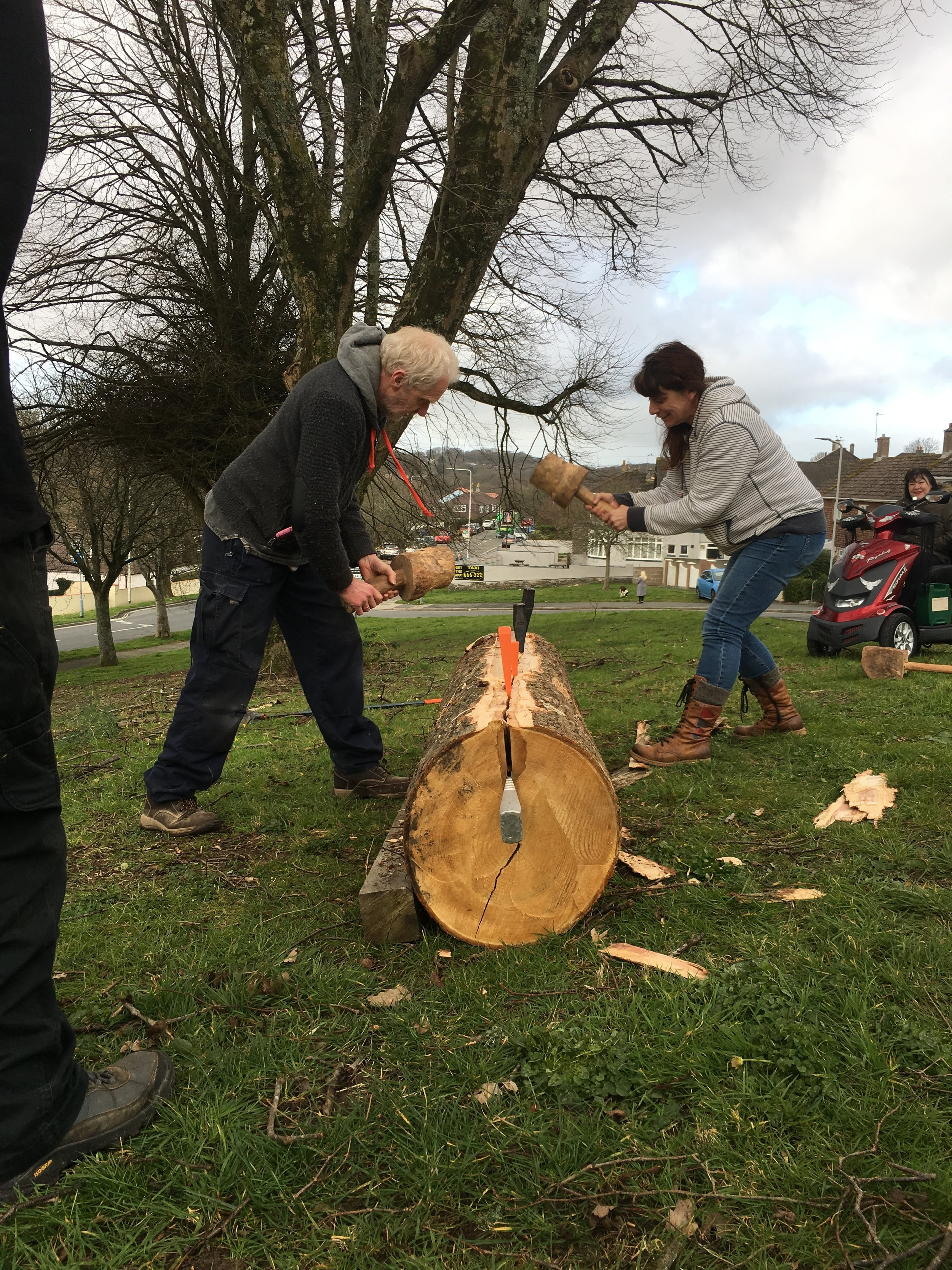 Cleaving the log by hand with mallets and wedges