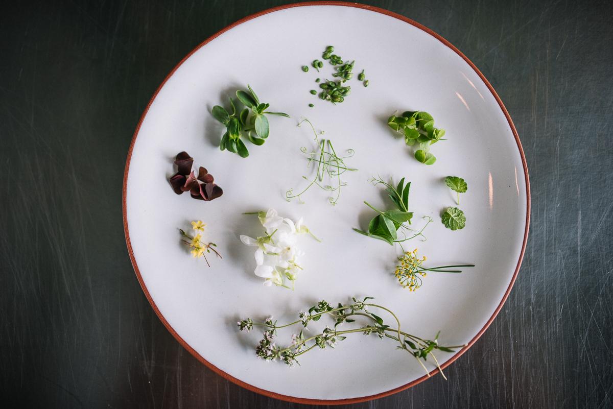 Darba vieta ir sakopta, visas sastāvdaļas saliktas pa tvērienam. Sākas smalkais ēdiena kopā salikšanas process.