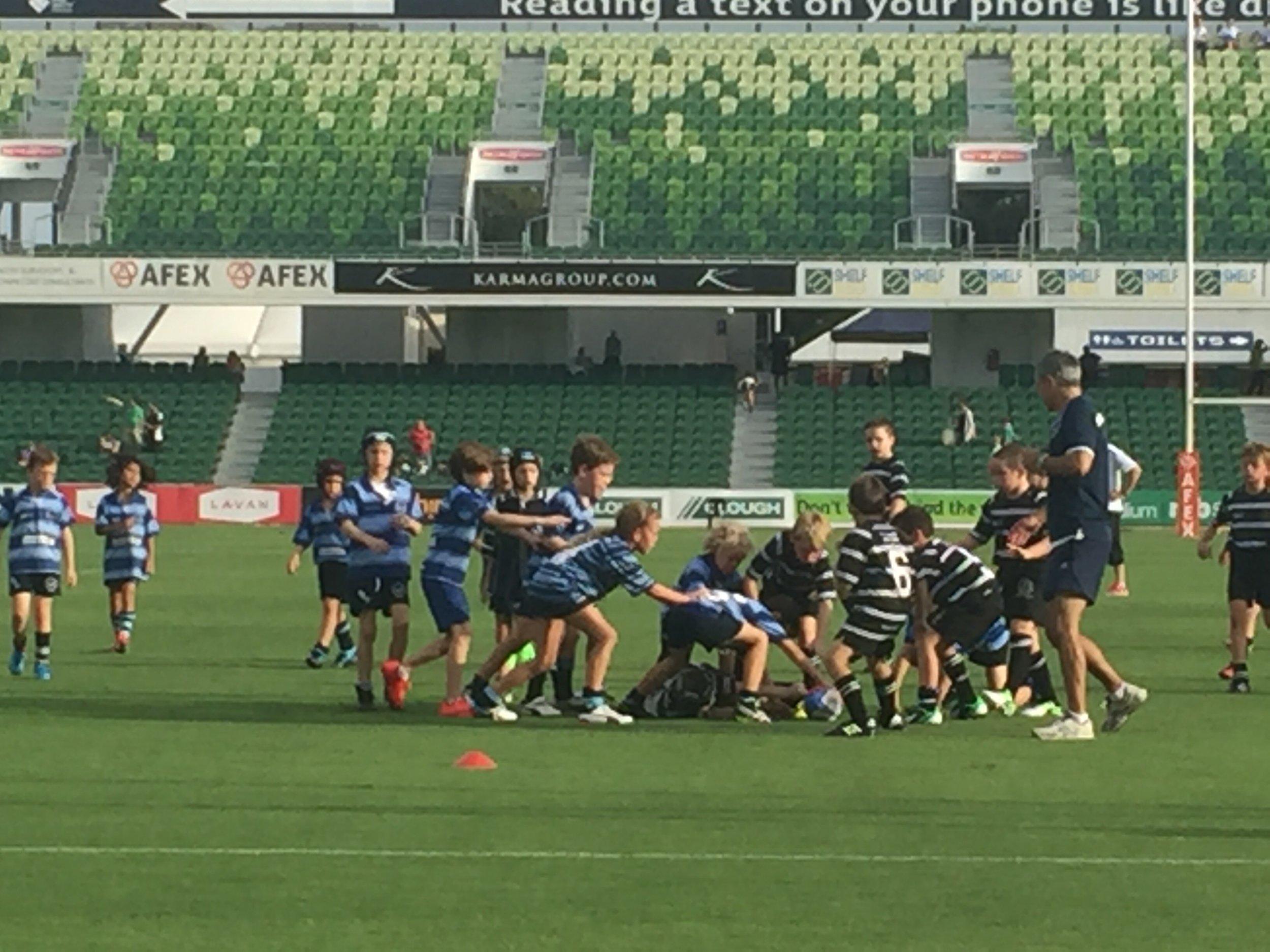 WA junior rugby