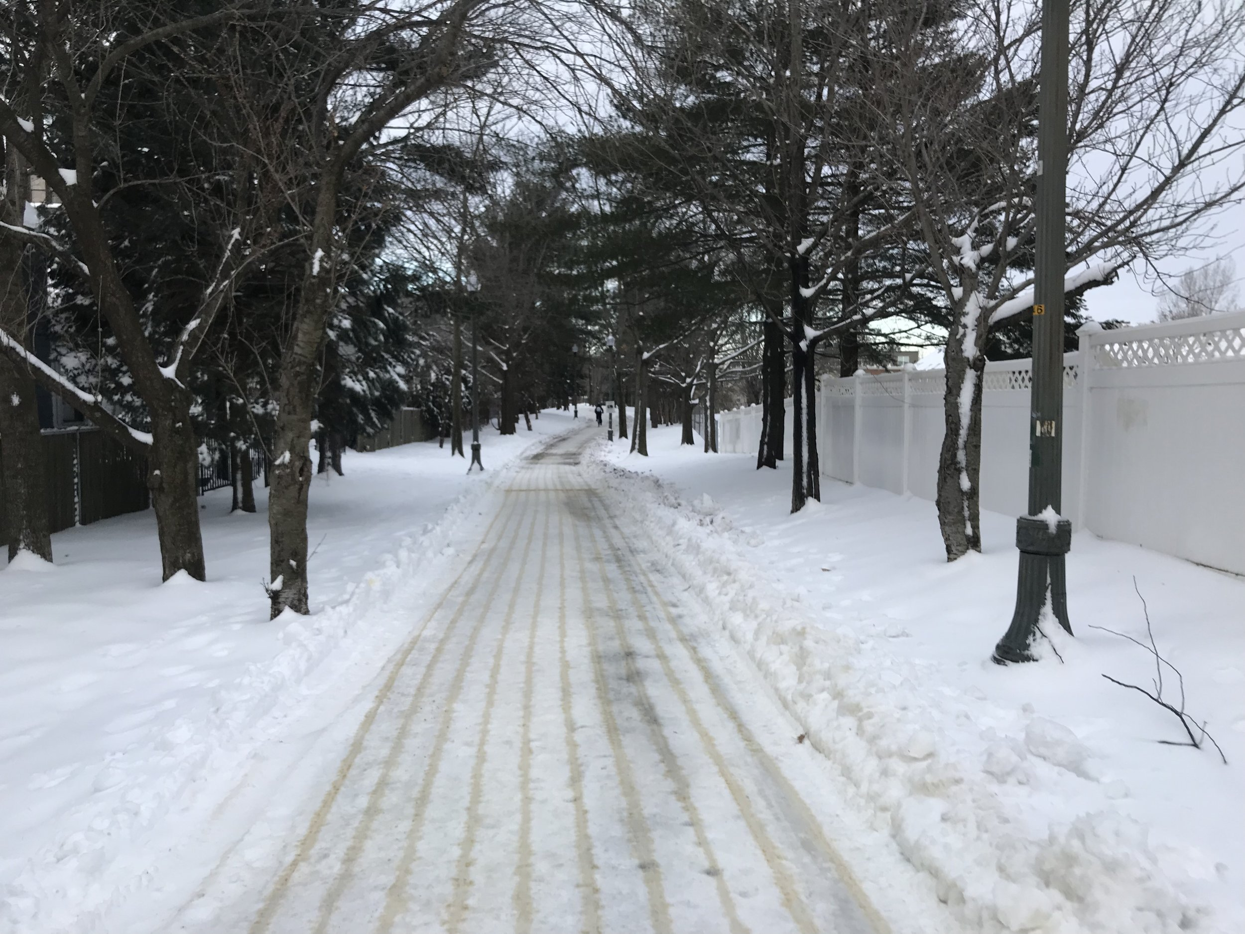 This is about as ideal as it gets for a snowy run. Somerville takes good care of its community path!